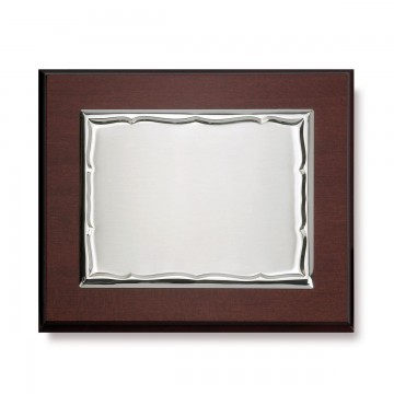 Placa de Plata Ondas 26,5 x 21,5cm